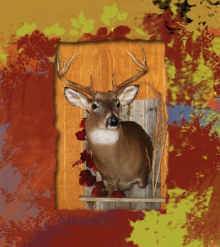 deer on barnwood with leaves