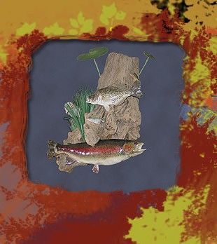 trout on driftwood