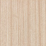 SWG-223 Red Oak